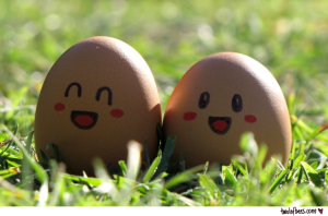 Happy Eggs!  Source: twolofbees.com